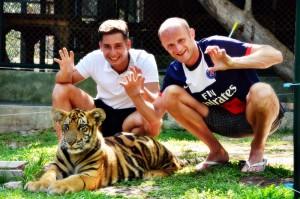 phuket-tiger-kingdom6phuket-tours-transfers-com
